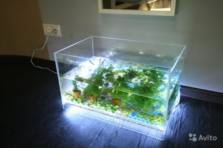 Освещение для аквариума светодиодной лентой своими руками