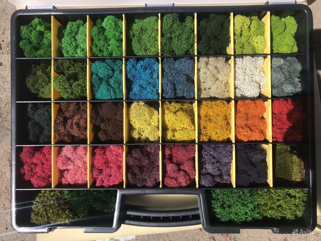 Стабилизированный мох от производителя купить на Зозу.ру - фотография № 1