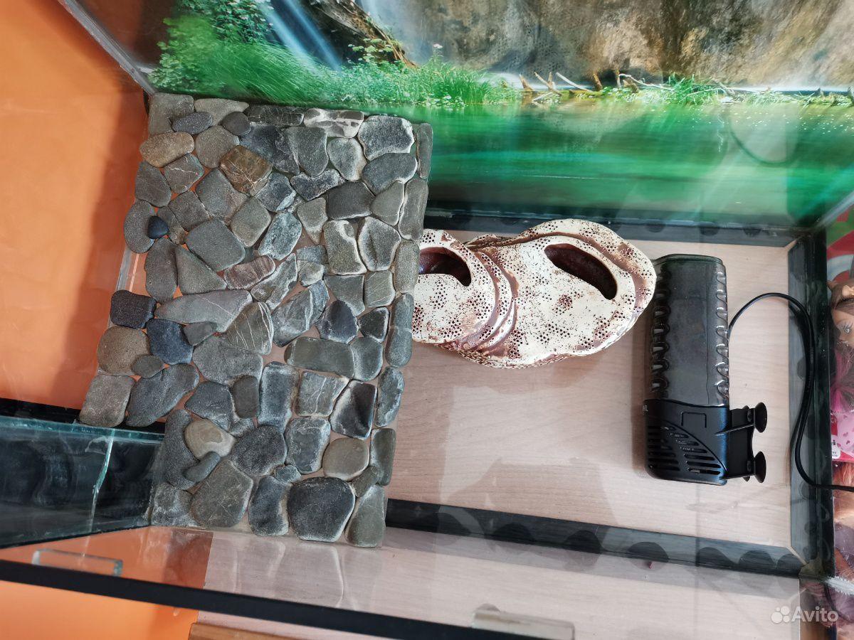 Продам террариум (аквариум) купить на Зозу.ру - фотография № 2