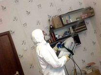 Уничтожение клещей, клопов и тараканов — Предложение услуг в Москве