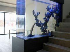 Акриловый аквариум