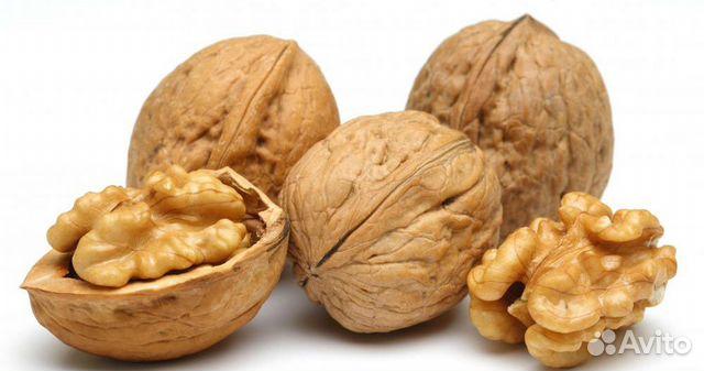 Куплю орехи грецкие в россия ростов