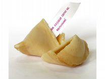 Волшебное печенье с предсказаниями I love YOU 7шт